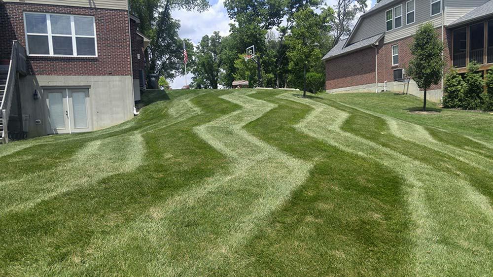Cincinnati Lawn Care